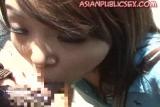 Mosaic: Random Asian Public Sex